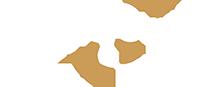 logo-du-cabinet-pellen-conseil-management-et-conduite-du-changement